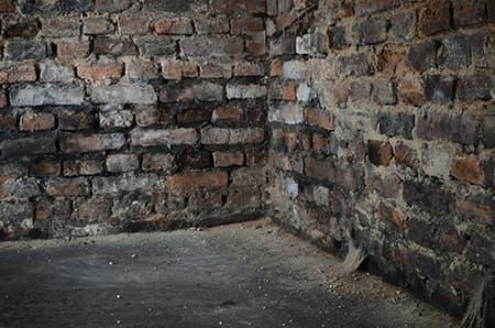 Damp Cellar Brickwork